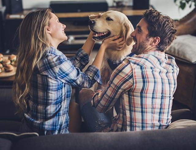 Happy couple at home playing with their dog